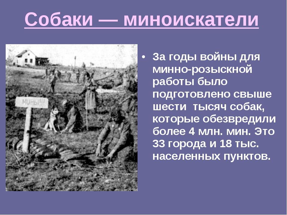 Собаки — миноискатели За годы войны для минно-розыскной работы было подготовл...