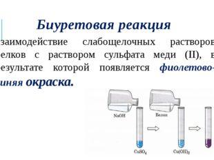Биуретовая реакция взаимодействие слабощелочных растворов белков с раствором