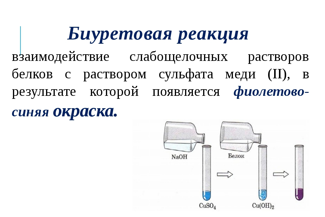 Биуретовая реакция взаимодействие слабощелочных растворов белков с раствором...
