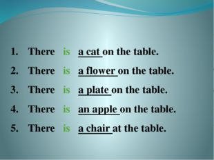 There is a cat on the table. There is a flower on the table. There is a plat