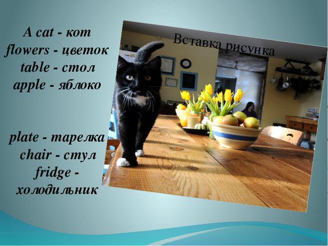 A cat - кот flowers - цветок table - стол apple - яблоко plate - тарелка chai...
