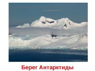 Берег Антарктиды