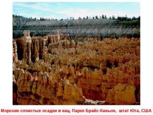 Морские слоистые осадки в нац. Парке Брайс-Каньон, штат Юта, США