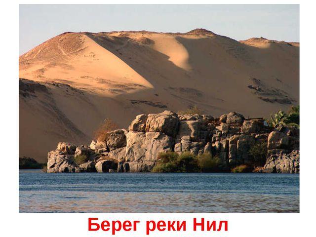 Берег реки Нил