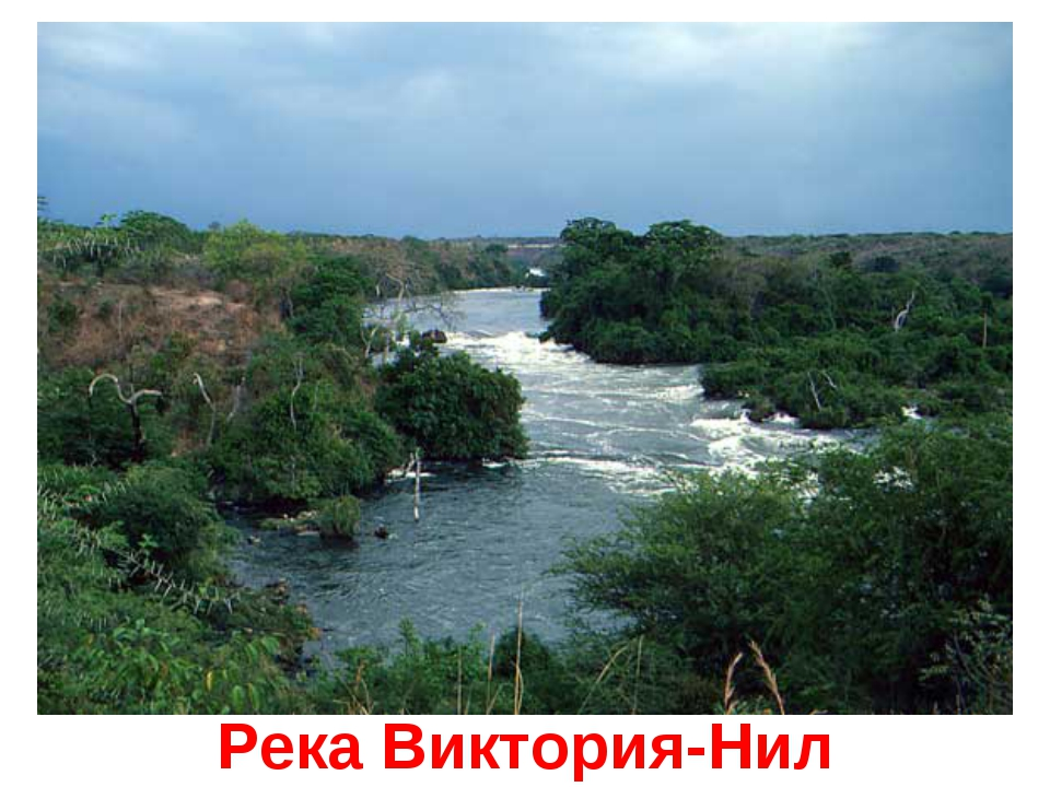 Река Виктория-Нил