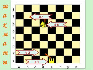 е 1 d 2 d 6 b7 шахматы