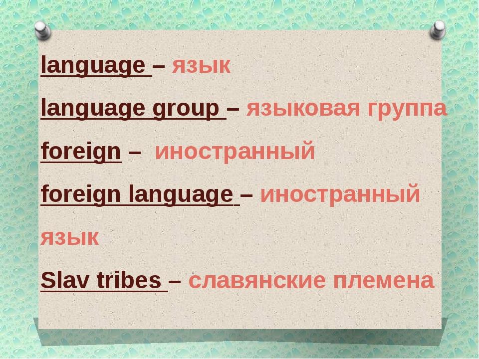 language – язык language group – языковая группа foreign – иностранный foreig...