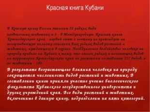 Красная книга Кубани В Красную книгу России занесены 32 редких вида позвоночн