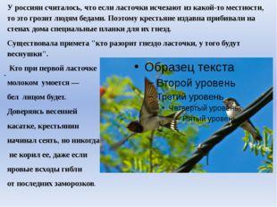 У россиян считалось, что если ласточки исчезают из какой-то местности, то это