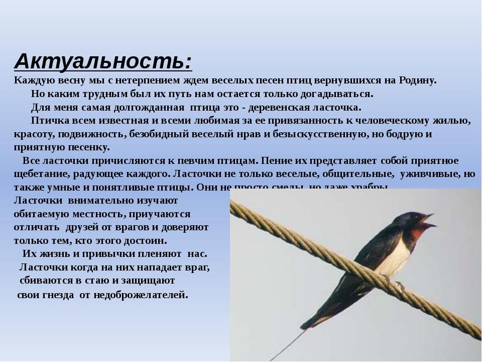 Актуальность: Каждую весну мы с нетерпением ждем веселых песен птиц вернувши...