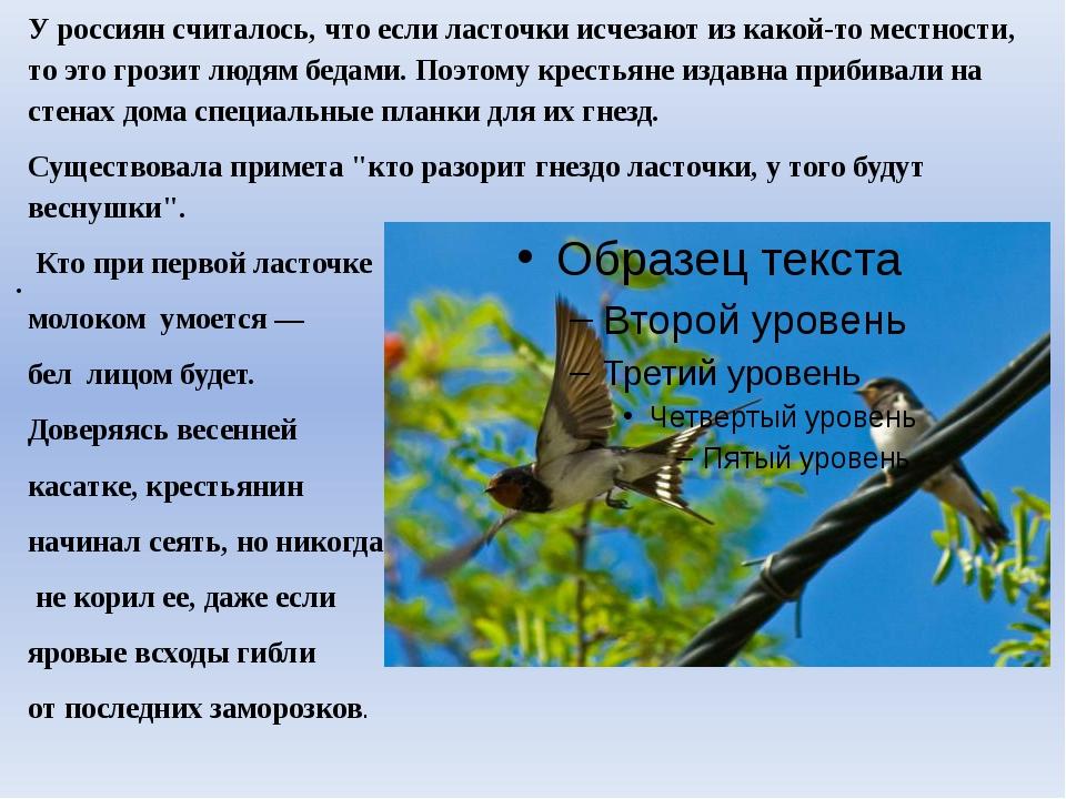 У россиян считалось, что если ласточки исчезают из какой-то местности, то это...