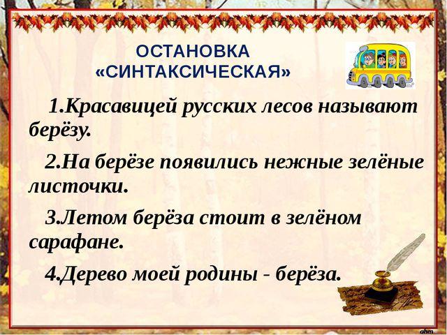 ОСТАНОВКА «СИНТАКСИЧЕСКАЯ»     1.Красавицей русских лесов называют берёзу....