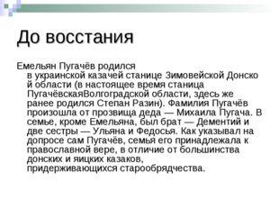 До восстания Емельян Пугачёв родился вукраинскойказачейстаницеЗимовейской