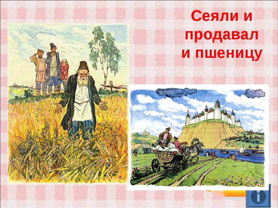 Сеяли и продавали пшеницу