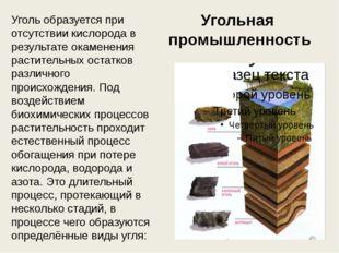 Угольная промышленность Уголь образуется при отсутствии кислорода в результат