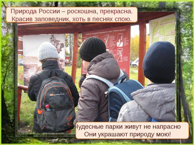 Природа России – роскошна, прекрасна. Красив заповедник, хоть в песнях спою....