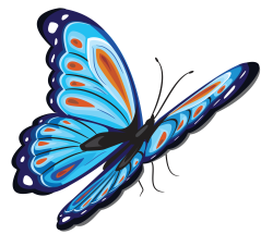 C:\Users\user\Desktop\Мои программы и разработки\butterfly-235.png