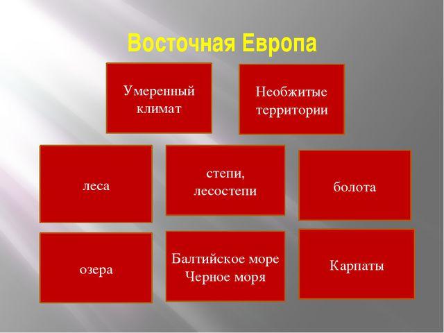 Восточная Европа Умеренный климат леса степи, лесостепи болота озера Балтийск...