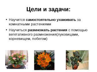 Цели и задачи: Научится самостоятельно ухаживать за комнатными растениями Нау