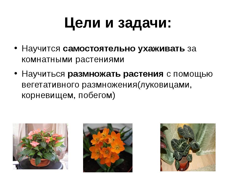 Цели и задачи: Научится самостоятельно ухаживать за комнатными растениями Нау...