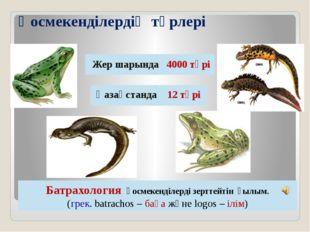 Қосмекенділердің түрлері Жер шарында 4000 түрі Қазақстанда 12 түрі Батрахолог