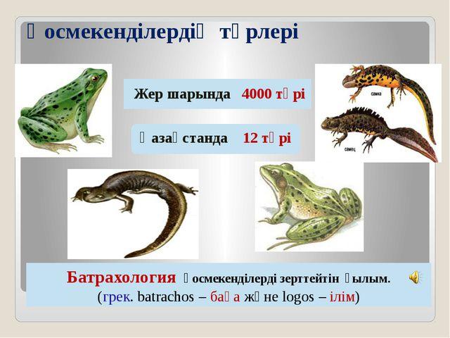 Қосмекенділердің түрлері Жер шарында 4000 түрі Қазақстанда 12 түрі Батрахолог...