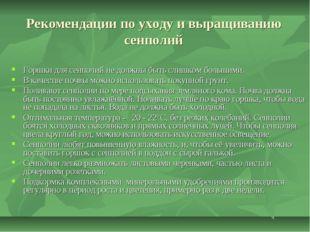Рекомендации по уходу и выращиванию сенполий Горшки для сенполий не должны бы