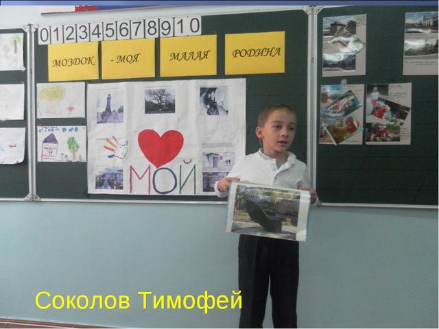* Соколов Тимофей