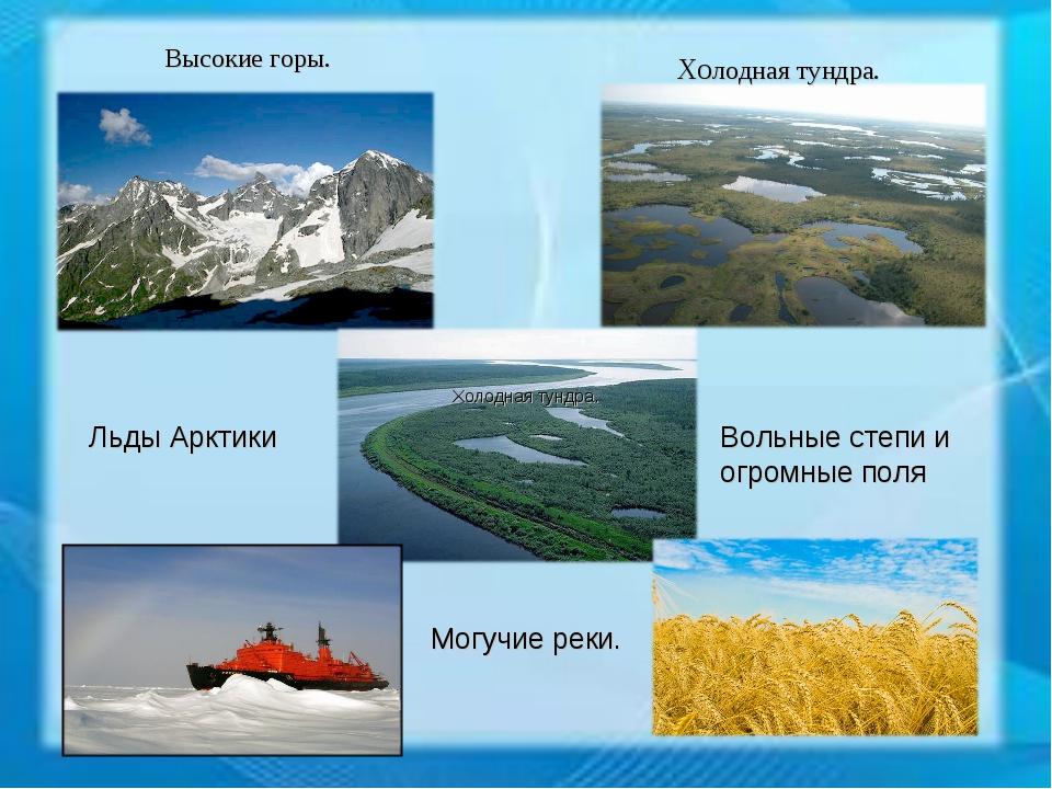 Высокие горы. Холодная тундра. Холодная тундра. Льды Арктики Вольные степи и...