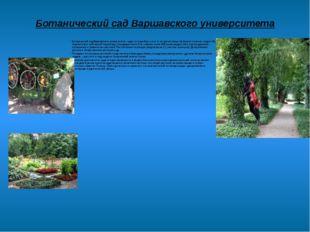 Ботанический сад Варшавского университета Ботанический сад Варшавского универ