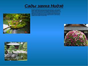 Сады замка Нидзё Для человека, неравнодушного к искусству японского сада, пое