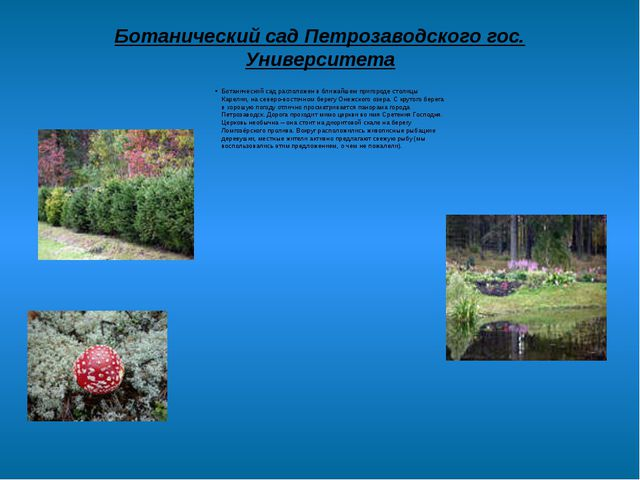 Ботанический сад Петрозаводского гос. Университета Ботанический сад расположе...