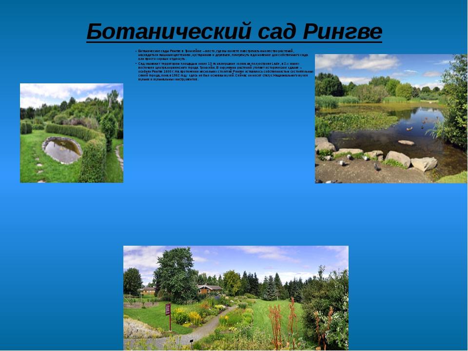 Ботанический сад Рингве Ботанические сады Рингве в Тронхейме – место, где вы...