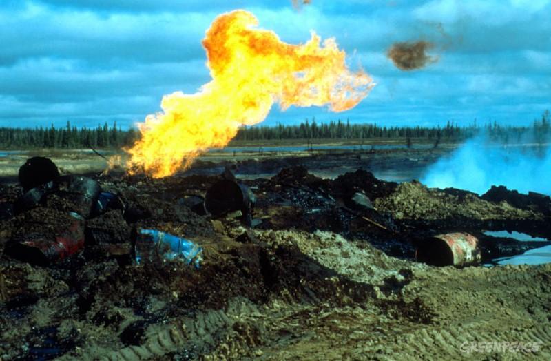http://www.greenpeace.org/russia/Global/russia/image/2004/8/64910.jpg