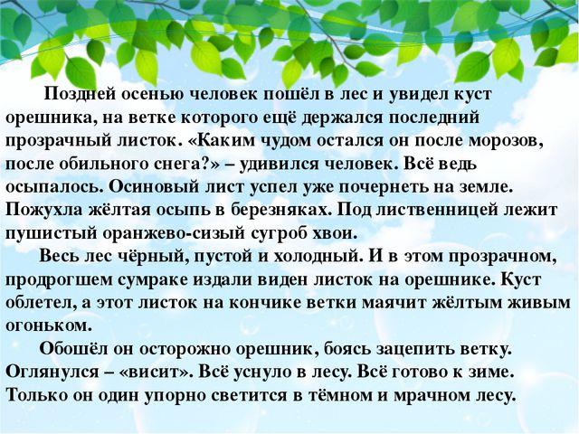 Поздней осенью человек пошёл в лес и увидел куст орешника, на ветке которого...