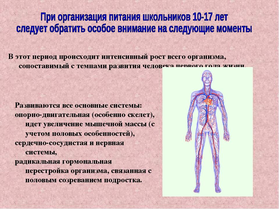 В этот период происходит интенсивный рост всего организма, сопоставимый с тем...