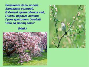 Зеленеет даль полей, Запевает соловей. В белый цвет оделся сад, Пчелы первые