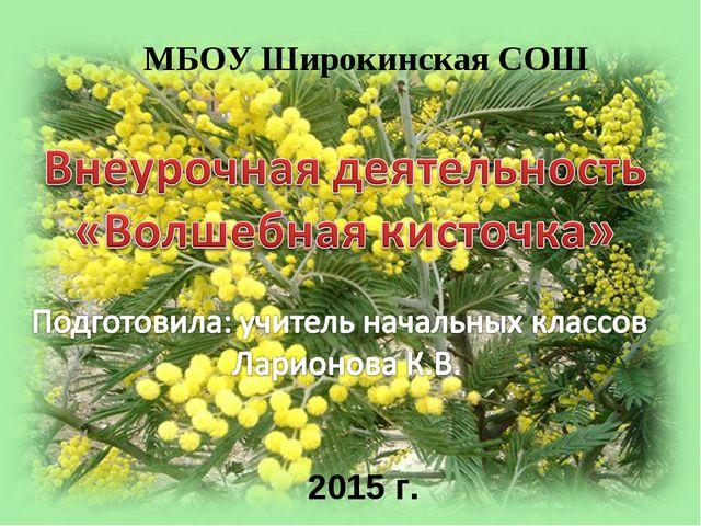 МБОУ Широкинская СОШ 2015 г.