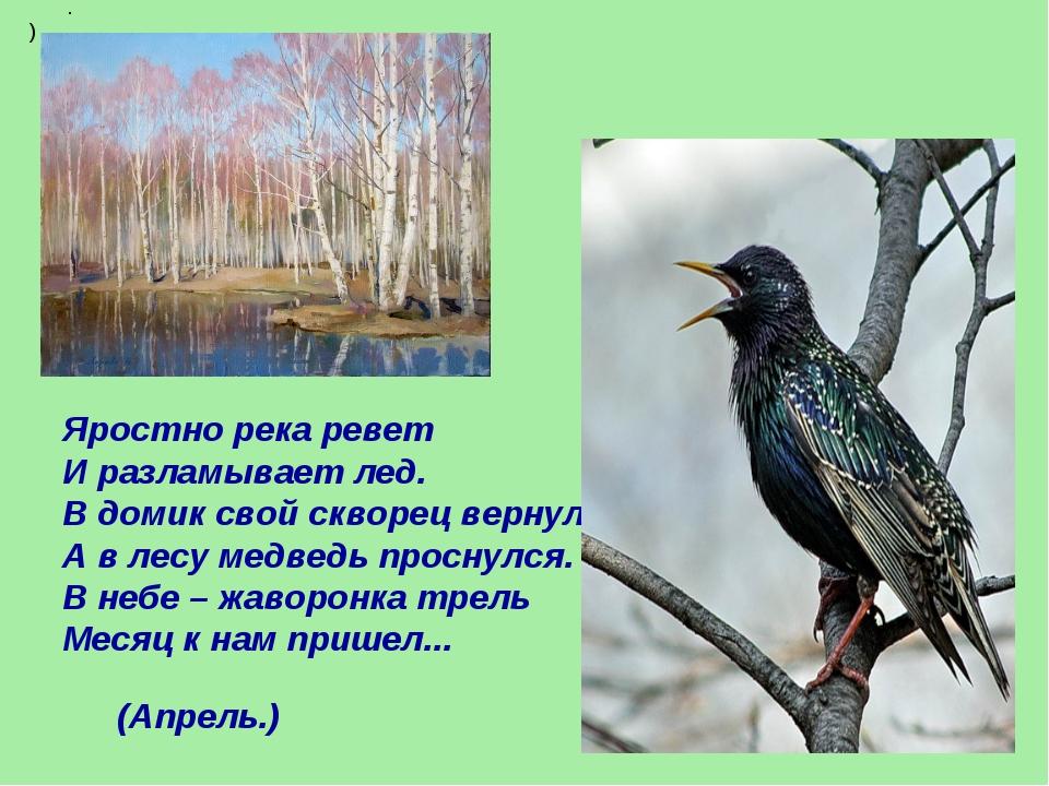 Яростно река ревет И разламывает лед. В домик свой скворец вернулся, А в лесу...