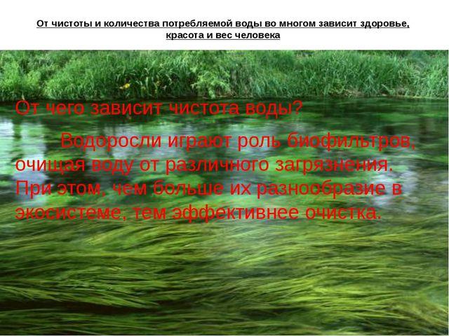 От чистоты и количества потребляемой воды во многом зависит здоровье, красота...
