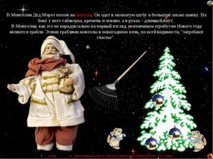 В Монголии Дед Мороз похож на пастуха. Он одет в мохнатую шубу и большую лись