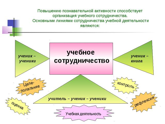 Повышению познавательной активности способствует организация учебного сотрудн...