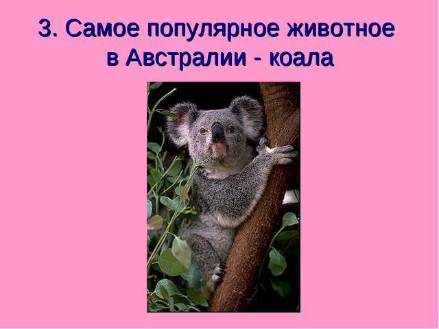 3. Самое популярное животное в Австралии - коала