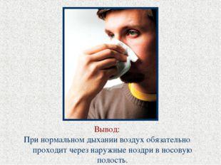 Вывод: При нормальном дыхании воздух обязательно проходит через наружные нозд