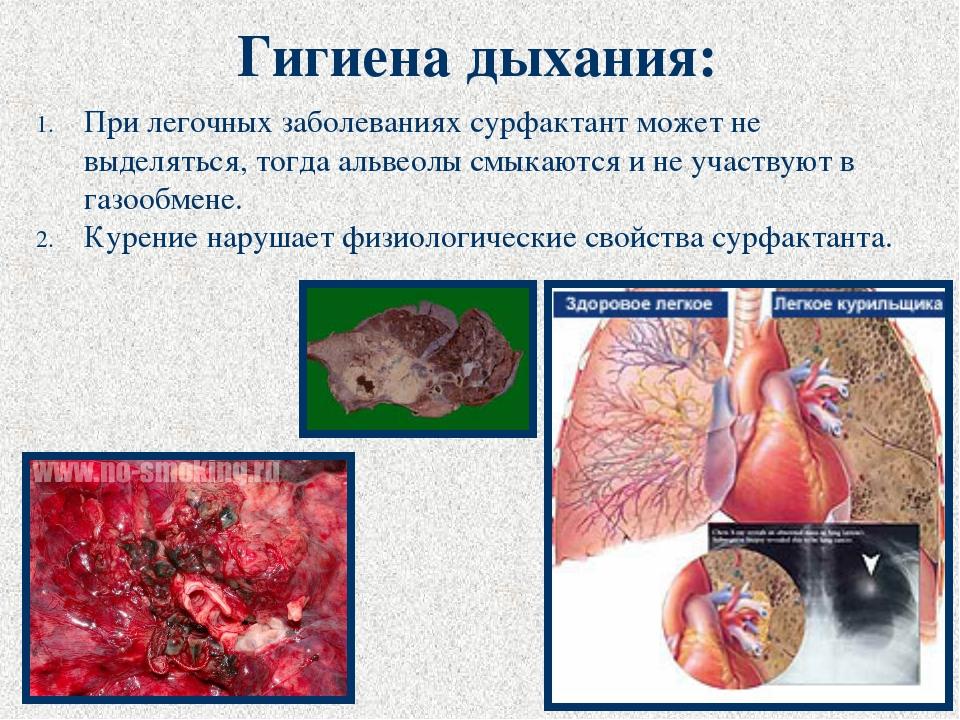 При легочных заболеваниях сурфактант может не выделяться, тогда альвеолы смык...