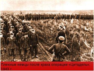 Пленные немцы после краха операции «Цитадель». 1943 г.