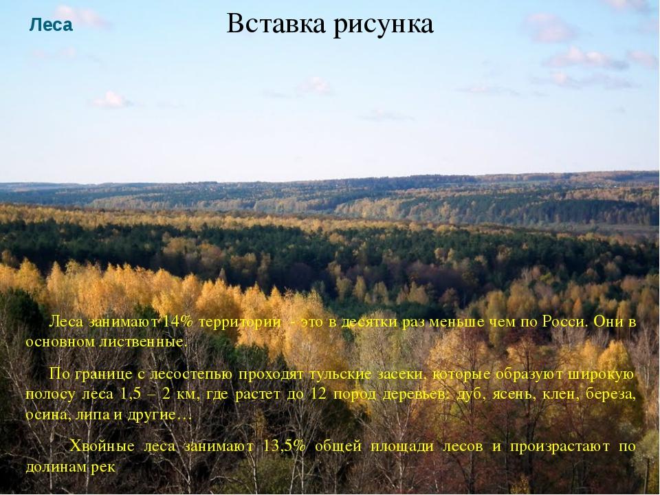 Леса Леса занимают 14% территории - это в десятки раз меньше чем по Росси. Он...