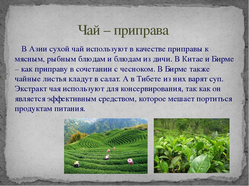 В Азии сухой чай используют в качестве приправы к мясным, рыбным блюдам и бл...