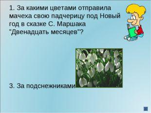 1. За какими цветами отправила мачеха свою падчерицу под Новый год в сказке С