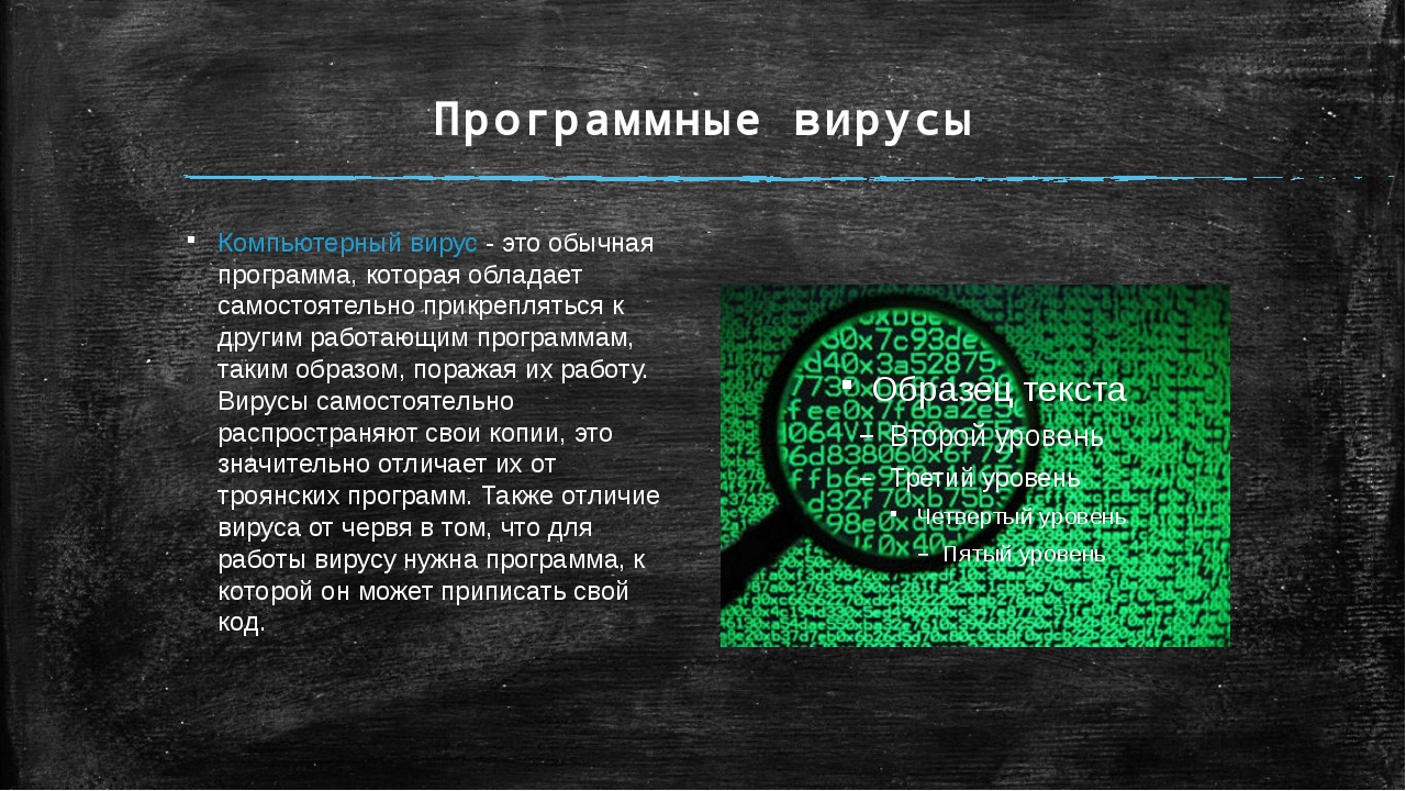 Программные вирусы Компьютерный вирус - это обычная программа, которая облада...